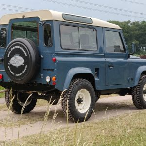1991 LR LHD Defender 90 Tdi Arles Blue AA right rear
